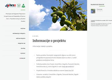 portfolio: Perdaquercus project